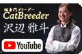 YouTube沢辺雅斗